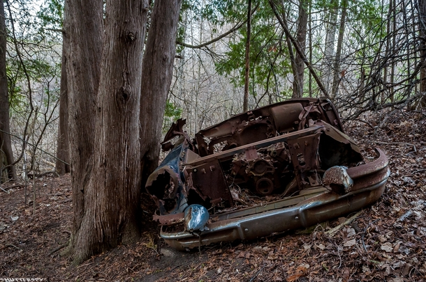 Buick Century Series  parked indefinitely in the ravine