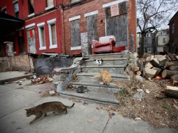 Philadelphia Property Taxes