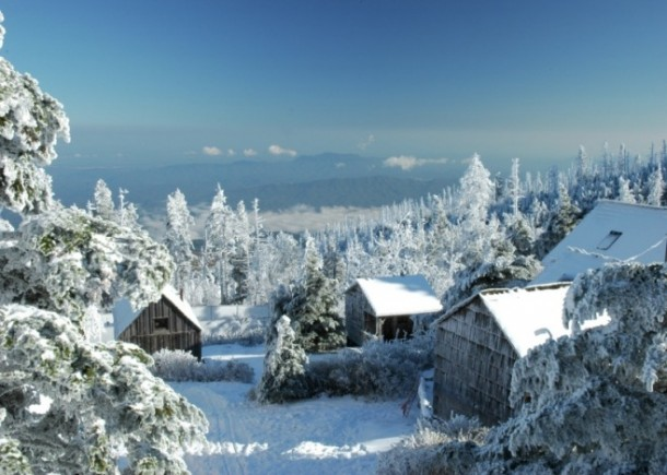 Inches Of Snow At The Leconte Lodge Great Smoky Mountain National