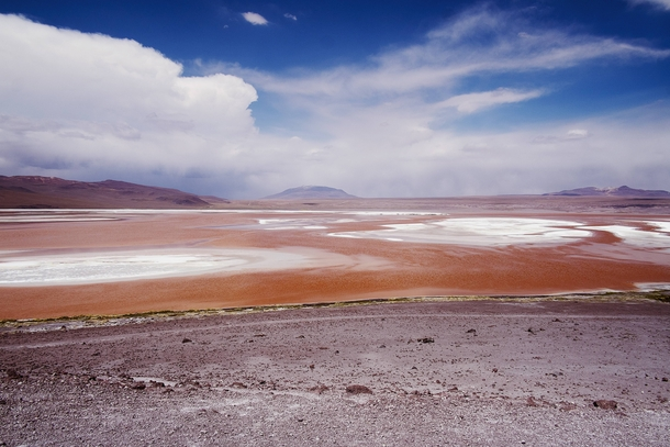 Lago Colorado at  MSL South Bolivia  x