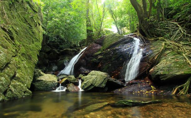 20 Magical Waterfalls to Chase Near Cairns |Cairns Australia Waterfalls