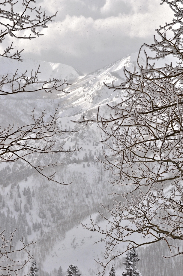 A brief lull in the storm while backcountry skiing Baker Pass in Big Cottonwood Canyon above Salt Lake City Utah    OC