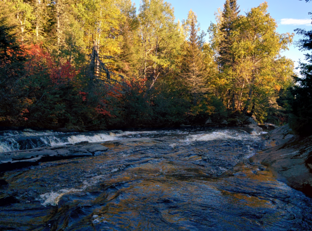 A cold stream flowing in a forest painted with autumnal color - shot two years ago somewhere in the Canadian Shield