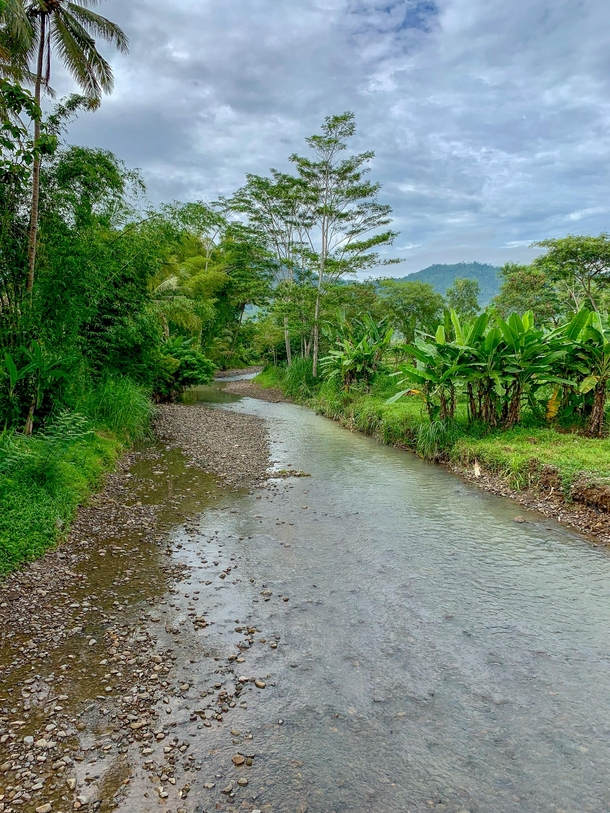 A small river with green surrounding not far from Borobudur Temple Indonesia Took this picture during a morning jog