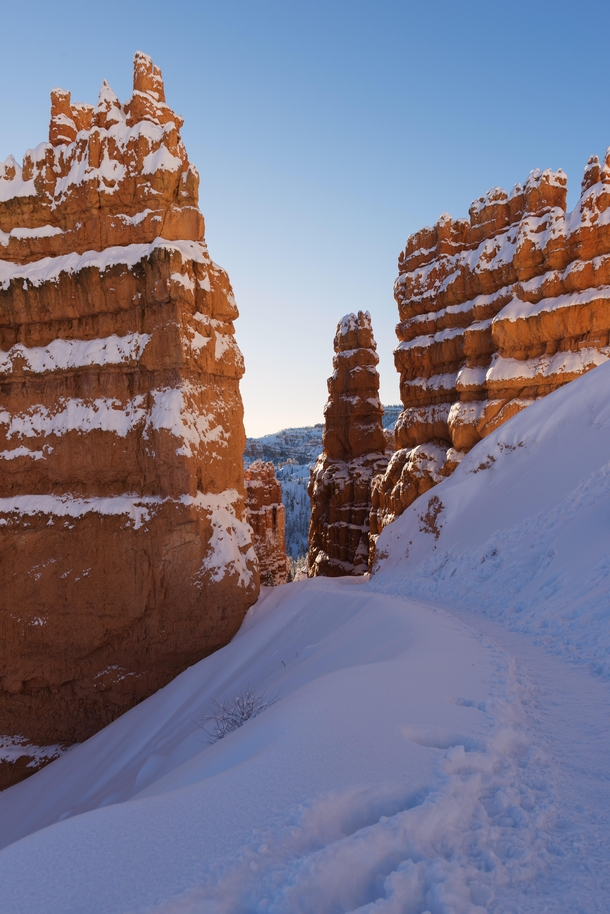 A walk among the hoodoos of Bryce Canyon