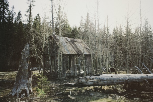 Abandoned Cabin In Kings Beach Lake Tahoe California