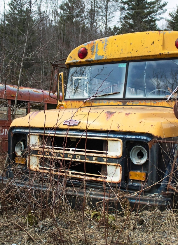 Abandoned School Buses - Vermont
