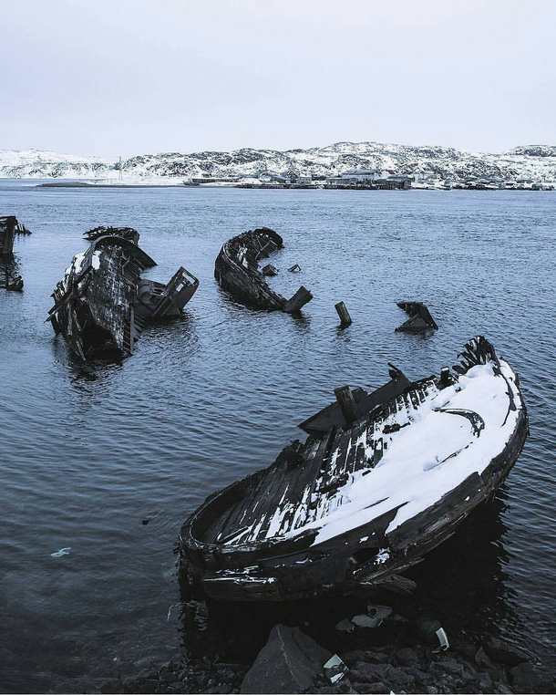 Abandoned ships look like dead whales