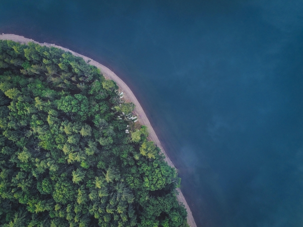 Aerial shot of water meeting forest at the Ashokan Reservoir