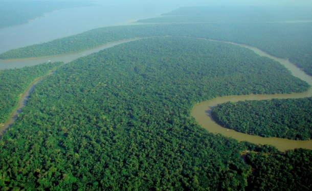 Aerial view of the Amazon Rainforest  xpost from rJunglePorn