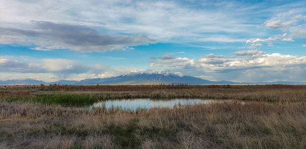 Alamosa Wildlife Refuge Colorado