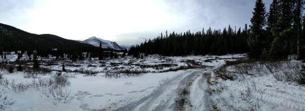 Alberta back country near cutoff creek staging area Snapped on my OnePlus