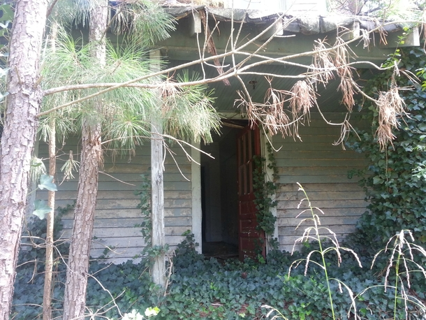 An opened door to a long-forgotten home in NC