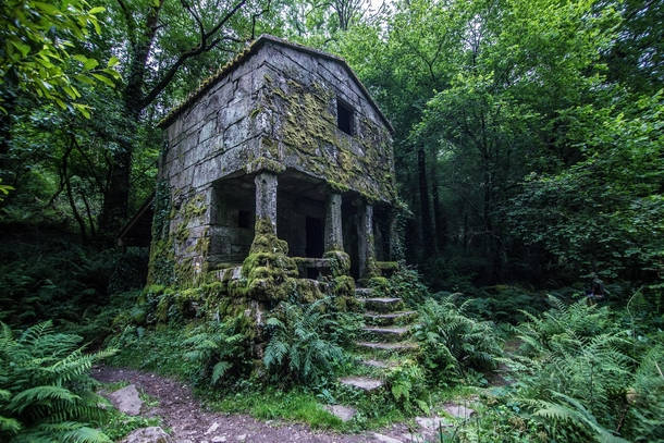 An Overgrown Structure Deep In The Forest Of Galicia Spain