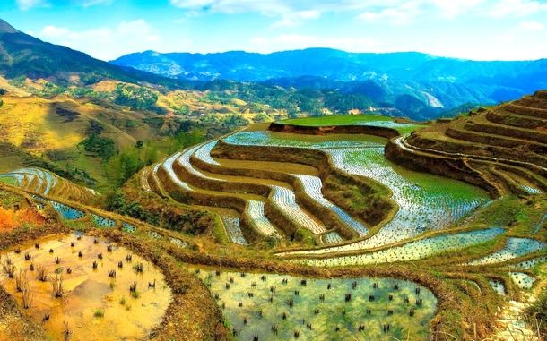 Banaue Rice Terraces Philippines  Original photographer unknown
