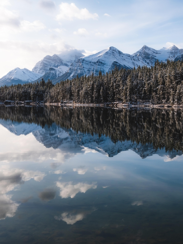 Banff Winter Reflections - Emerald Lake Canada  IG andyescapes OC