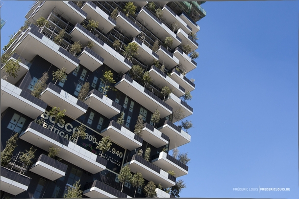 Bosco Verticale Stefano Boeri a m amp m residential tower complex with  trees on the balconies
