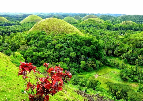 Chocolate Hills in the Phillipines Taken by Anwar Nillufary