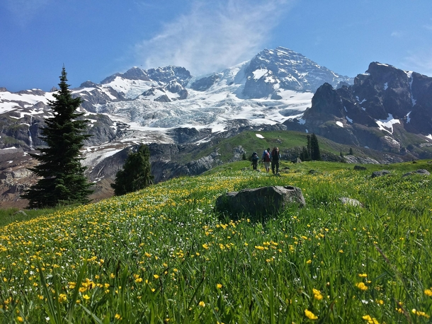 Classic shot of Mt Ranier from Emerald Ridge on the Wonderland Trail You gotta be there to really experience it