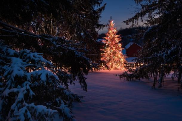 Country Christmas - upstate New York