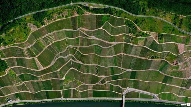 Daily Overview Step vineyards along the Moselle River - rzig Germany overveu