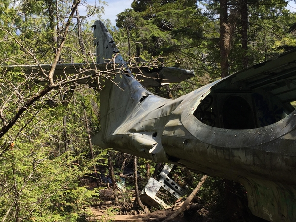 Downed Consolidated PBY-A Canso Bomber Tofino BC Canada x