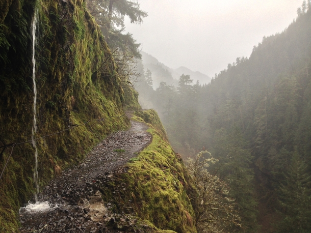Eagle creek trail in the rain Columbia Gorge area Oregon USA