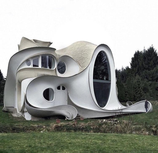 Erich Vogel Architect and his Designer Markus Aumuller have built a residence organic that were modeled after an octopus