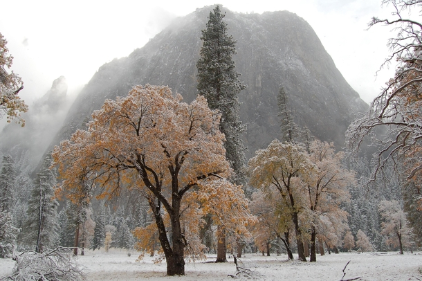 Fall colors and first snowfall in Yosemite