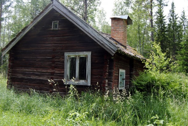 The Bloody Cottage In The Forest