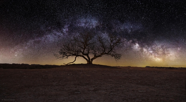 Gorgeous long exposure of a lone tree outside Sioux Falls South Dakota  photo by Aaron J Groen