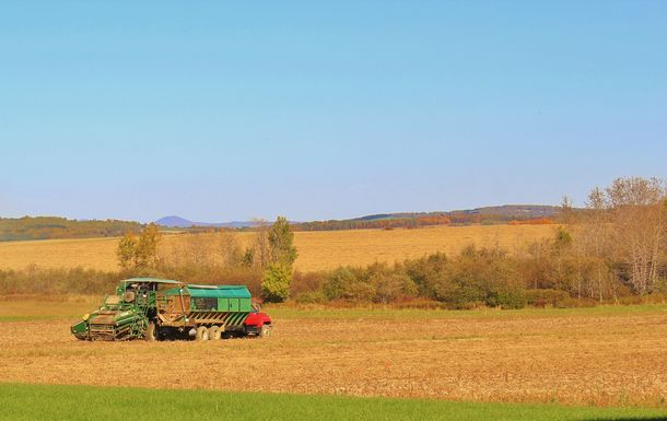 Harvesting Season in Aroostook County Maine