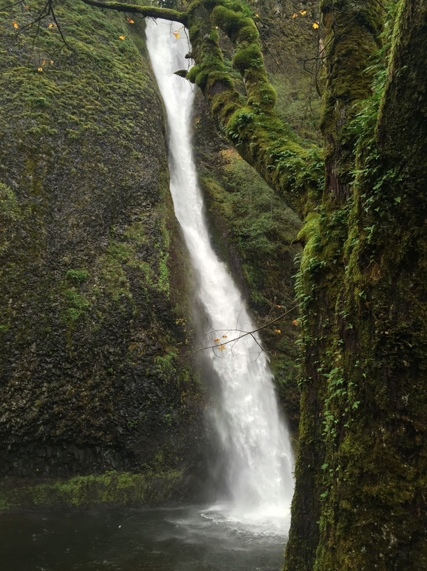 Horsetail falls outside of Portland OR along the Columbia River OC  x