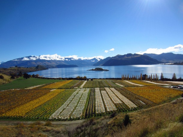 I dont know about this  karma thing but here is a photo my fiance took of Lake Wanaka from Gamay Winery in NZ
