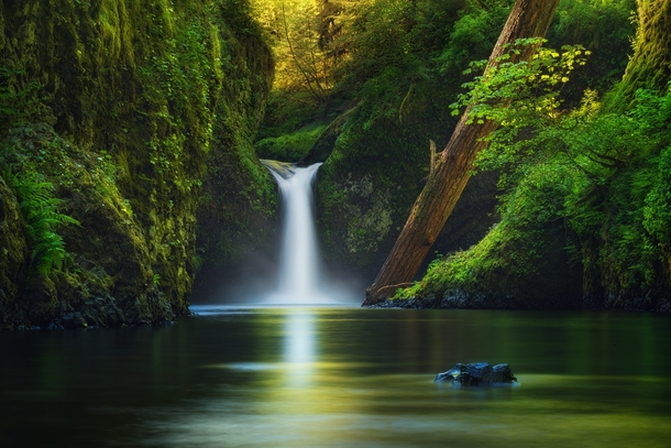 I took this shot of Punch Bowl Falls in Oregon last Spring It is a lush green paradise on earth By Victor Carreiro