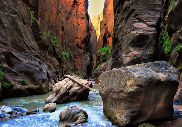I walked  miles through The Narrows at Zion National Park UT a few weeks ago This was my favorite picturecellphone