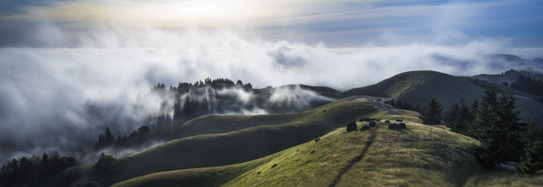 Im looking forward to more views like this now that our fog season has begun - Marin County California