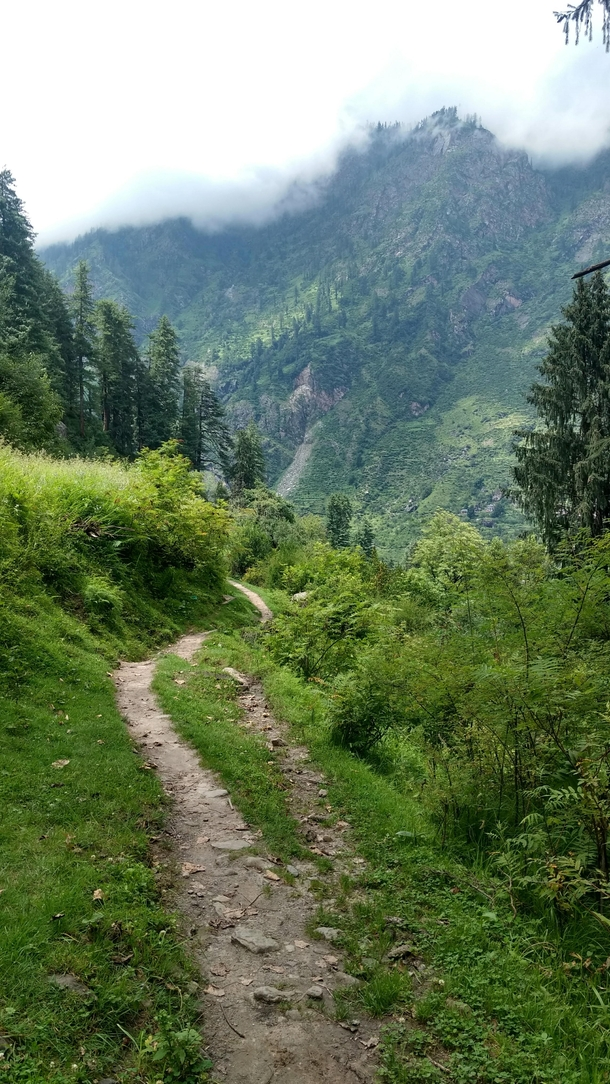 Im not the best photographer but Ive had the opportunity to visit some of the most beautiful parts of India Would love to share more from these mountains Anyway heres my path to enlightenment Himachal Pradesh India  OC