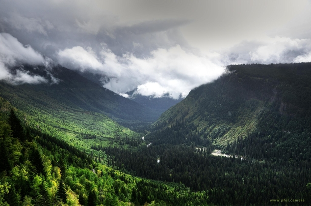 It may be called Glacier National Park but when I was there last summer it almost felt like a rain forest