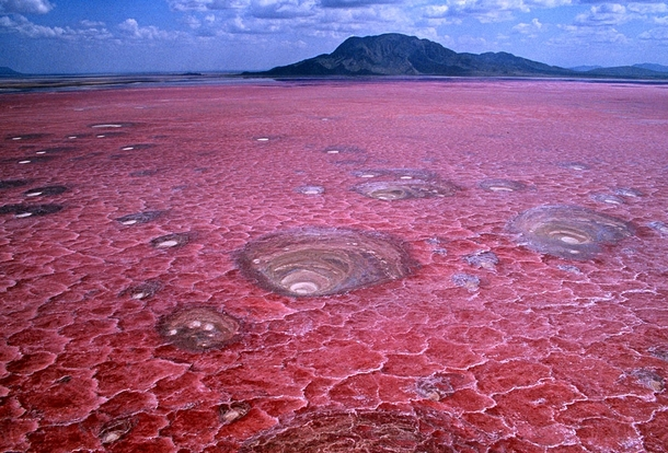 Lake Natron Tanzania This shallow salt lake can reach CF temperatures and depending on rainfall the alkalinity can reach a pH of  almost as alkaline as ammonia Red-pigmented bacteria thrive under the surface giving it the deep red color  Unknown photograp