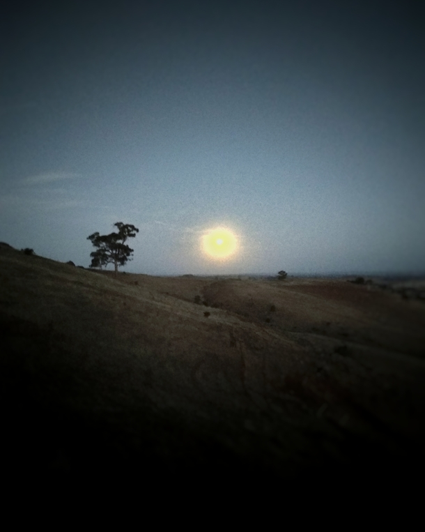 Looks like an oil painting of the sun but its actually a photo of the full moon Dookie Australia