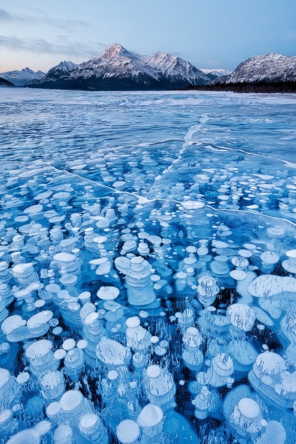 Methane bubbles frozen in a lake  x-post from rwoahdude