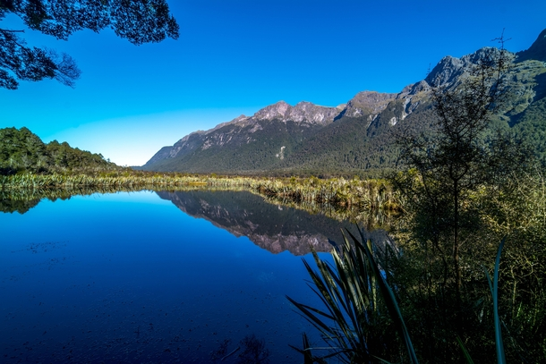 Mirror Lakes Road to Milford Sound New Zealand  OC