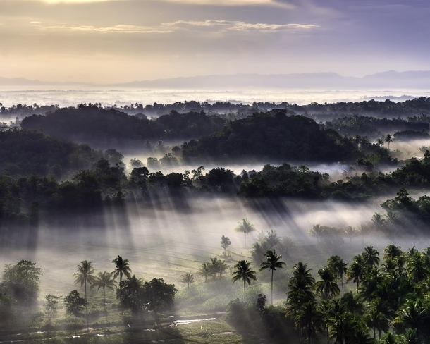 Misty View over the Chocolate Hills the Philippines  IG guswoods
