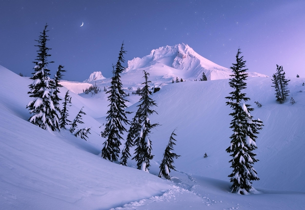 Moonlight Sonata Mount Hood OR  A cold morning to strap on those snowshoes