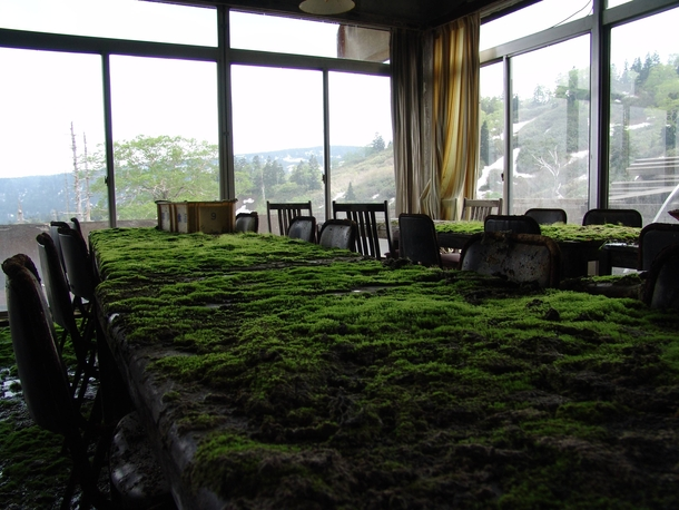 Mossy table tops at an abandoned hotel in Japan
