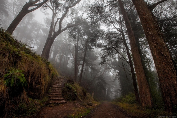 Mt Davidson San Francisco on a foggy morning Calif