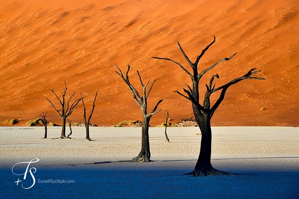 My first post in EarthPorn is a question Do the worlds highest sand dunes hide the most unreal sight in Africa Deadvlei in Namibia by Daniel Laskowski amp Luiza Zadros