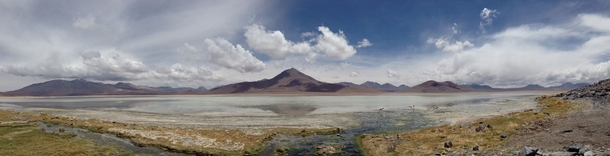 My sister is travelling in Chile and took this amazing picture in the Atacama Desert