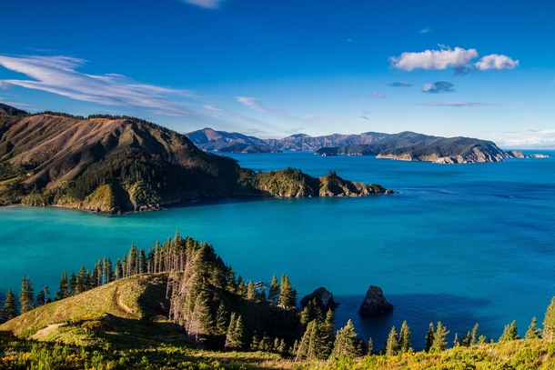 New Zealands real Sounds Port Underwood in the Marlborough Sounds